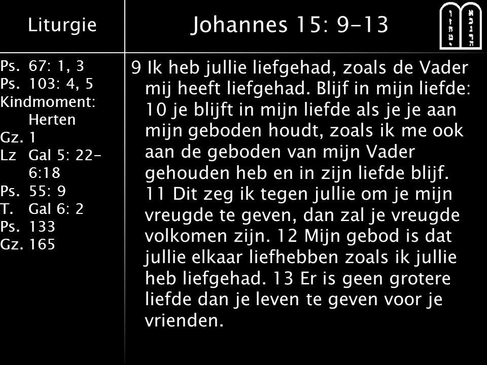 Johannes 15: 9-13