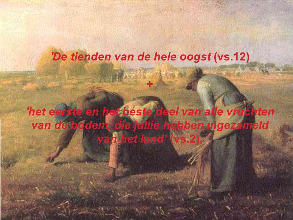 De tienden van de hele oogst (vs.12)