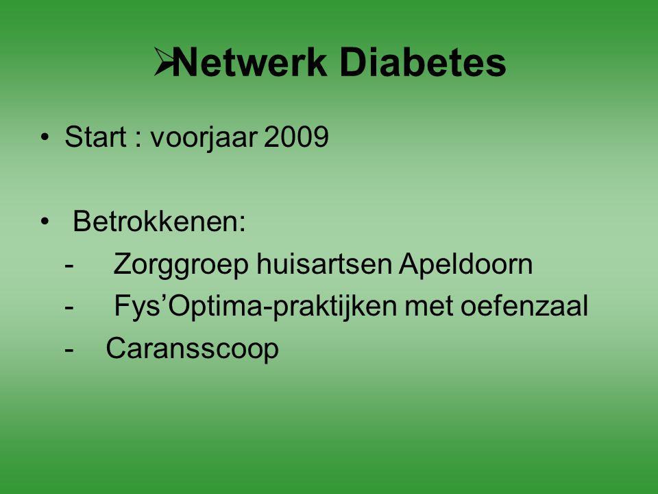 Netwerk Diabetes Start : voorjaar 2009 Betrokkenen: