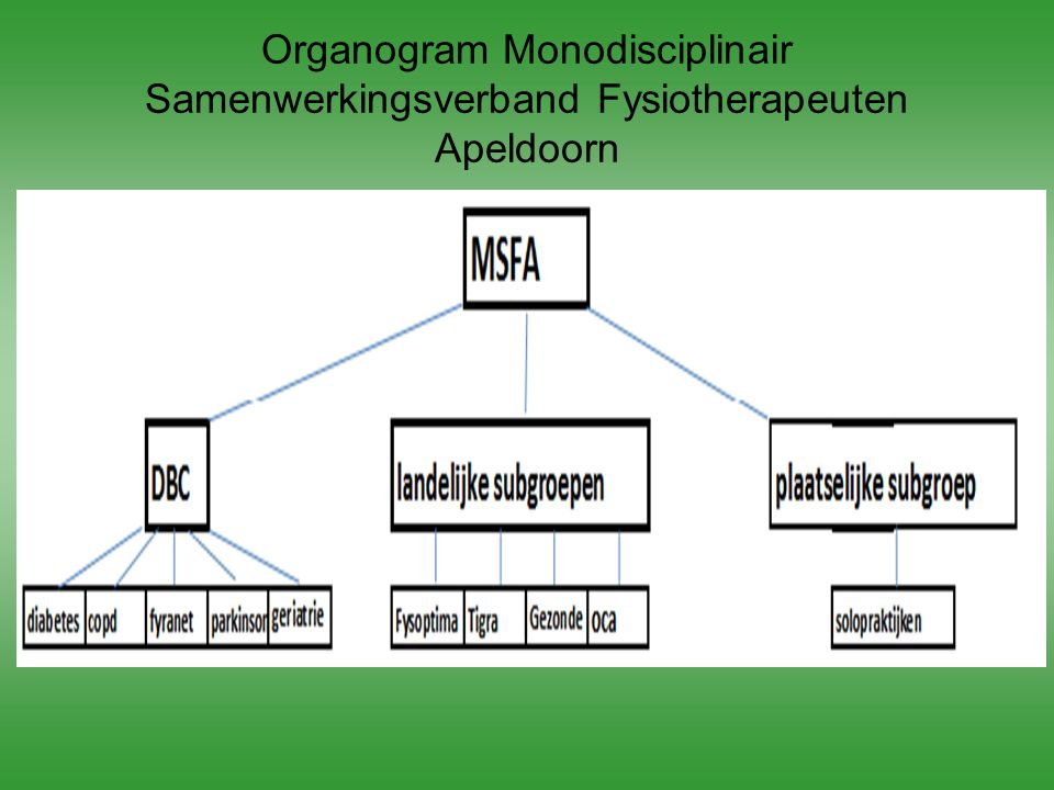 Organogram Monodisciplinair Samenwerkingsverband Fysiotherapeuten Apeldoorn