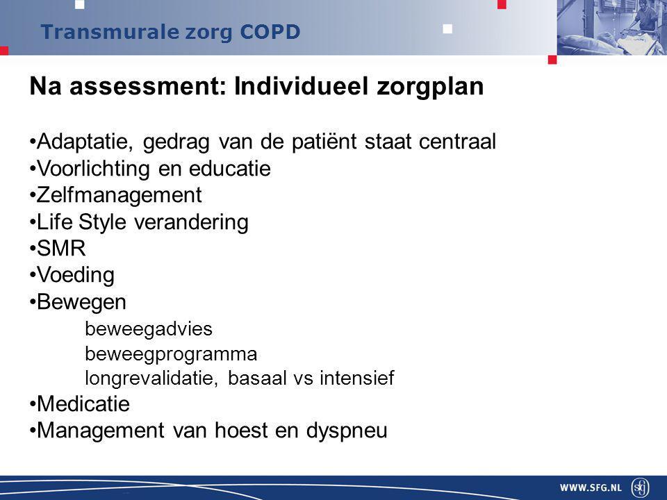Na assessment: Individueel zorgplan