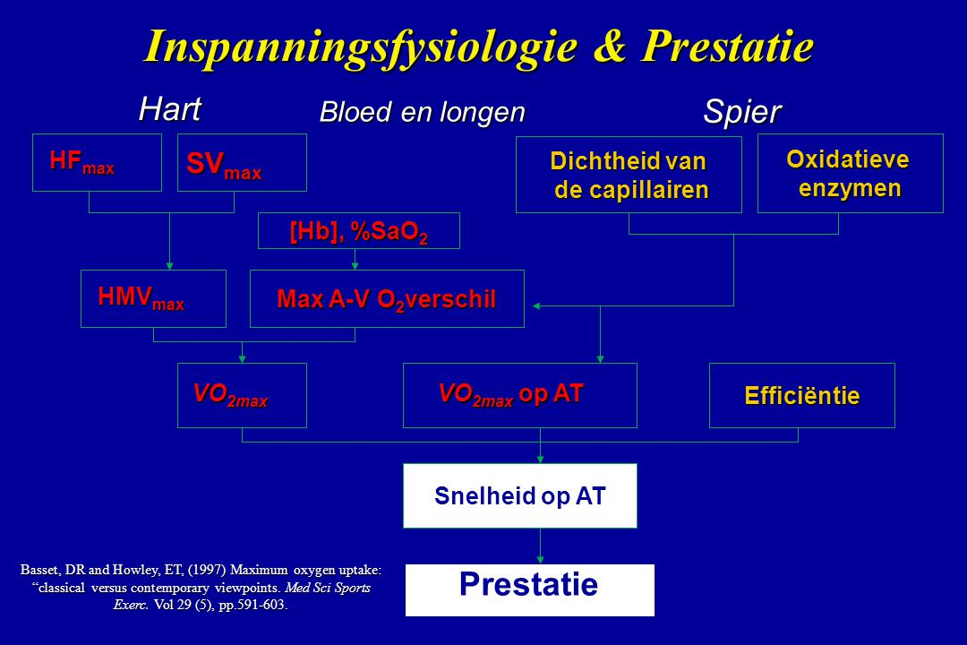 Inspanningsfysiologie & Prestatie