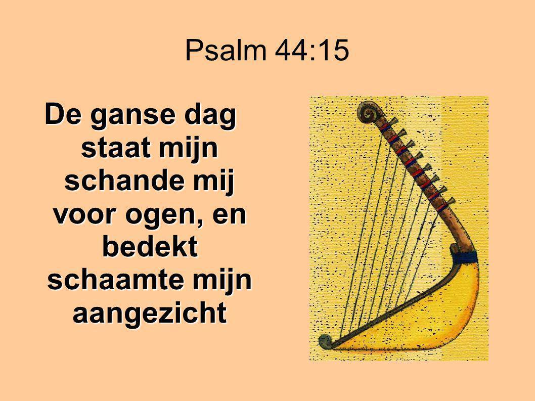 Psalm 44:15 De ganse dag staat mijn schande mij voor ogen, en bedekt schaamte mijn aangezicht