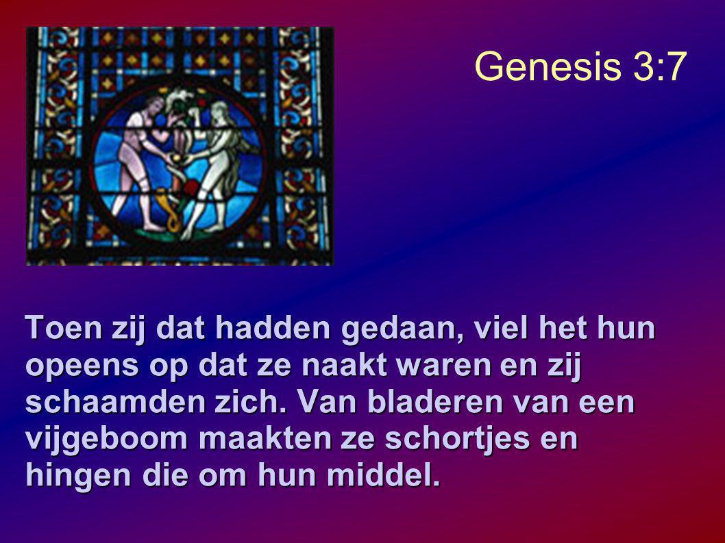 Genesis 3:7