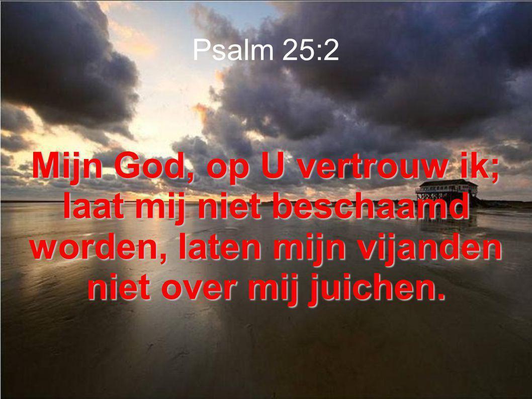 Psalm 25:2 Mijn God, op U vertrouw ik; laat mij niet beschaamd worden, laten mijn vijanden niet over mij juichen.