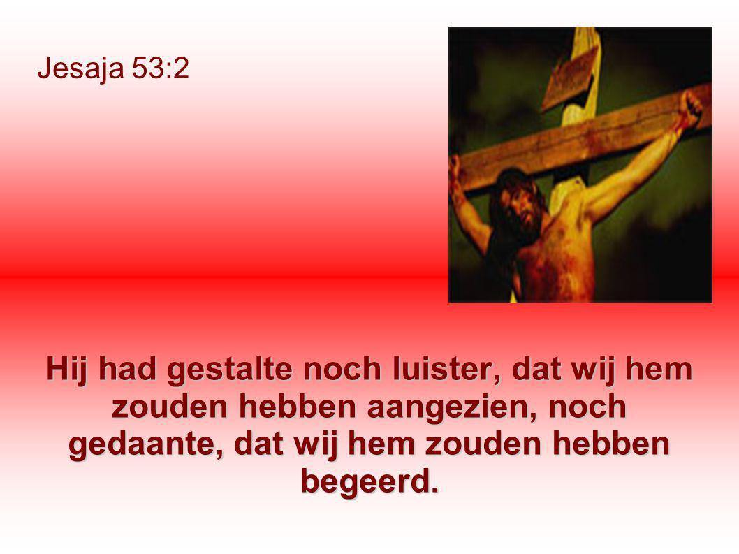 Jesaja 53:2 Hij had gestalte noch luister, dat wij hem zouden hebben aangezien, noch gedaante, dat wij hem zouden hebben begeerd.