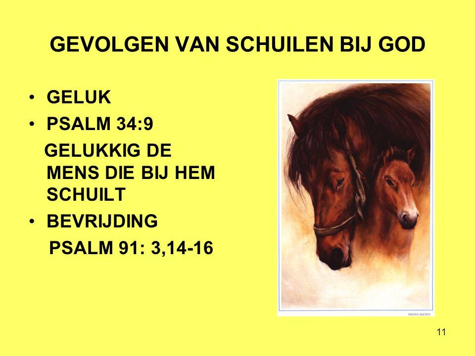 GEVOLGEN VAN SCHUILEN BIJ GOD
