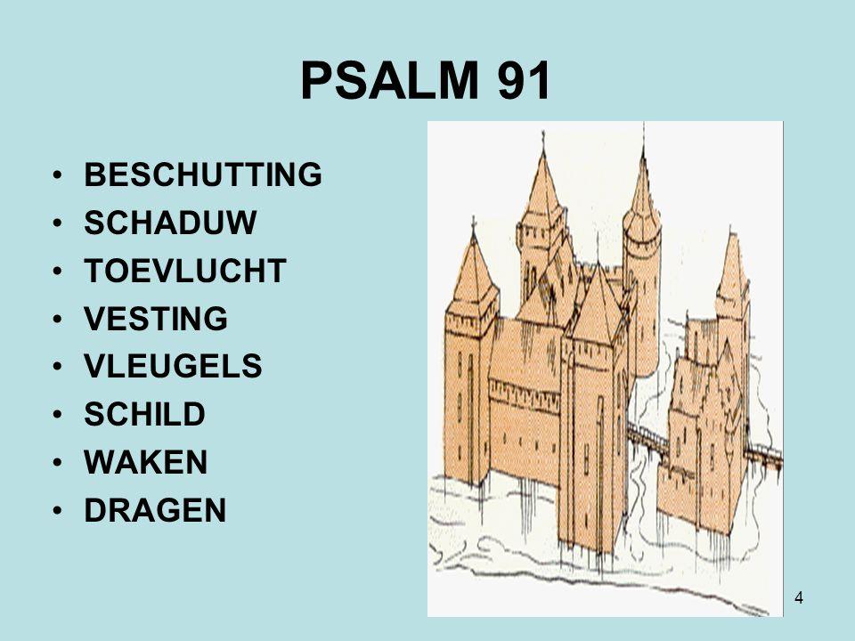 PSALM 91 BESCHUTTING SCHADUW TOEVLUCHT VESTING VLEUGELS SCHILD WAKEN