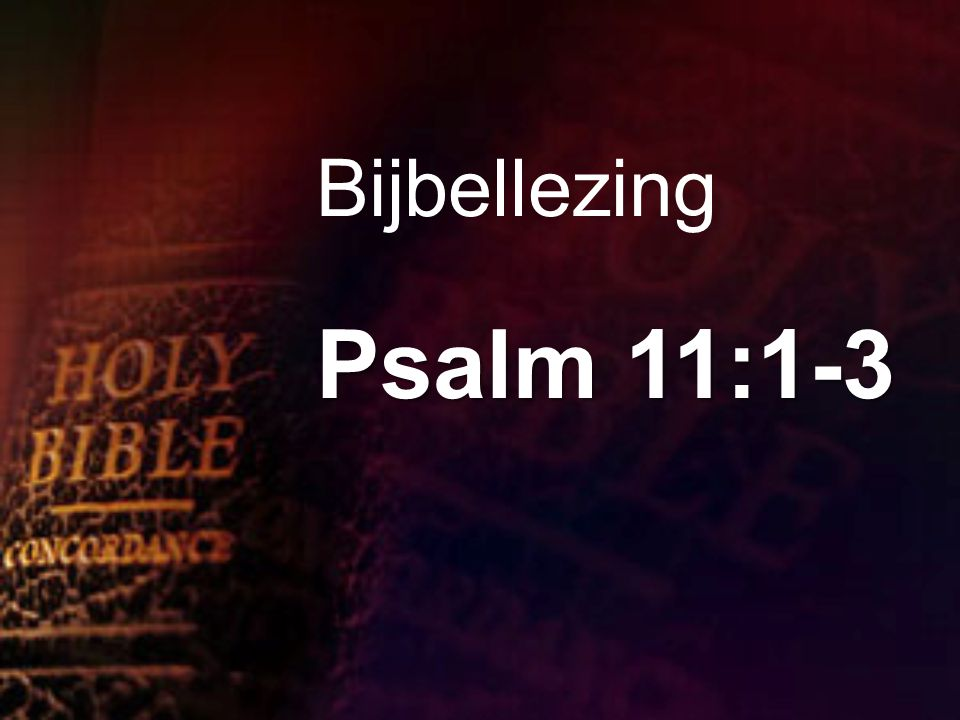 Bijbellezing Psalm 11:1-3
