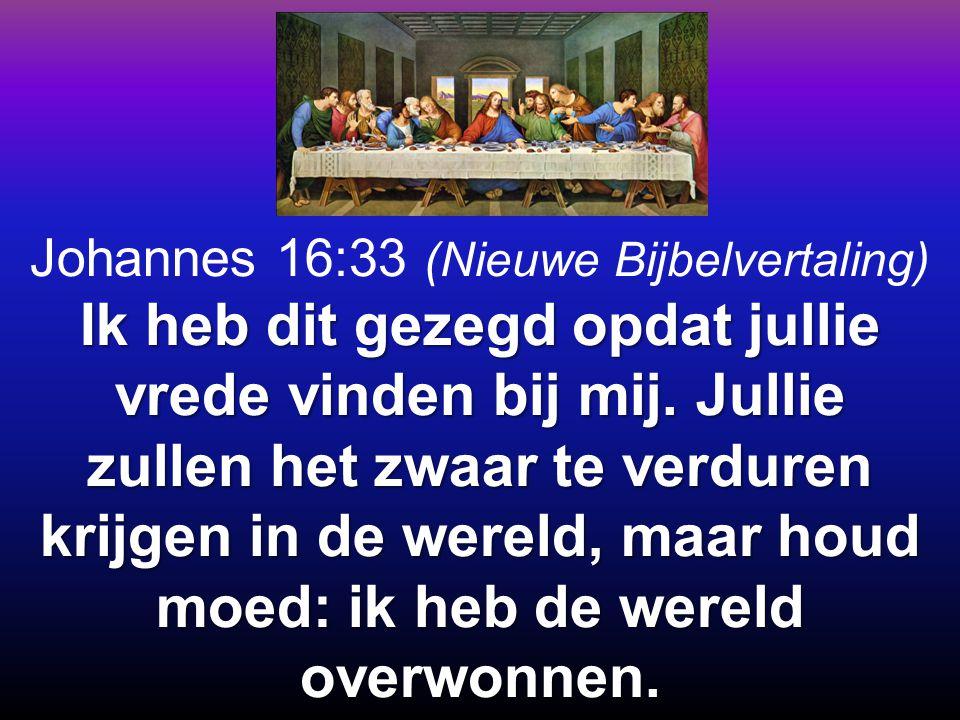 Johannes 16:33 (Nieuwe Bijbelvertaling)