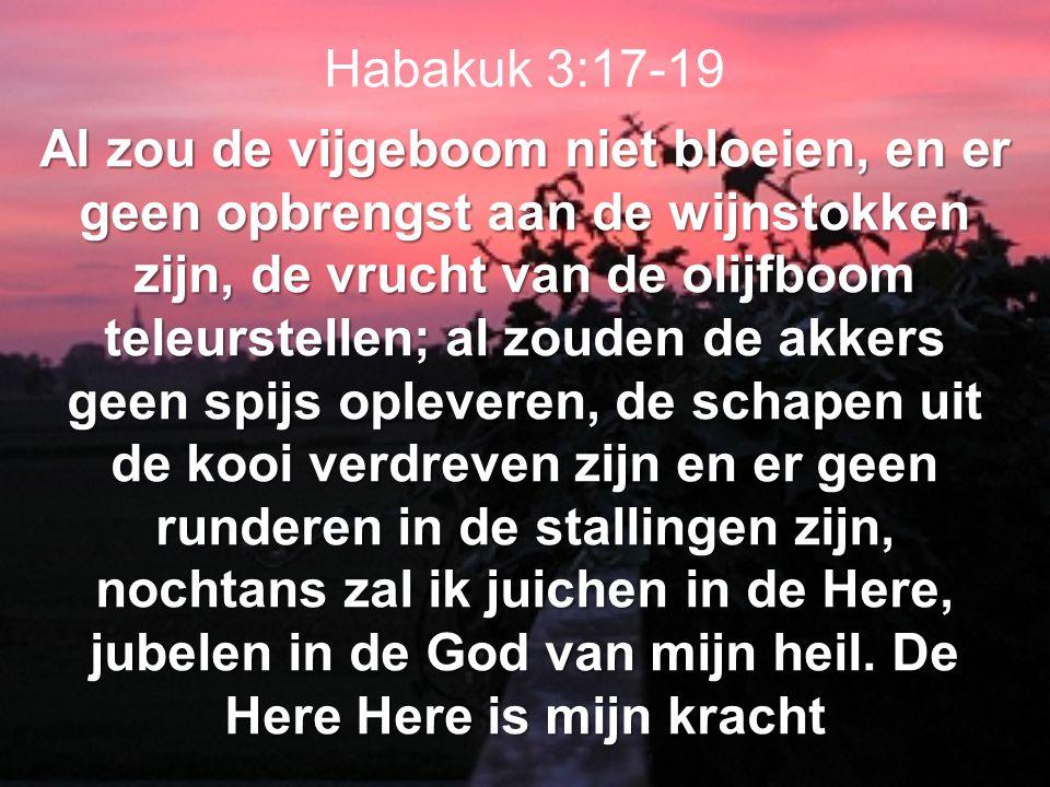 Habakuk 3:17-19