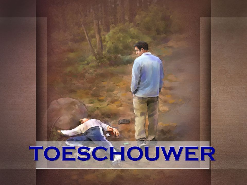 TOESCHOUWER