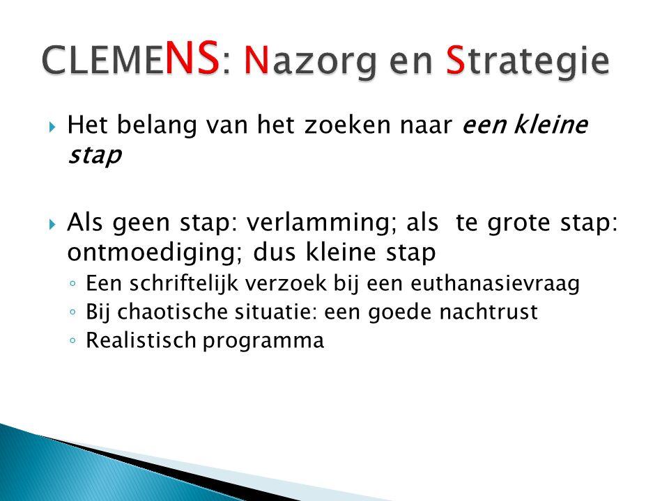 CLEMENS: Nazorg en Strategie
