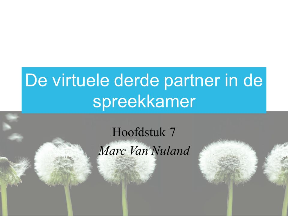 De virtuele derde partner in de spreekkamer