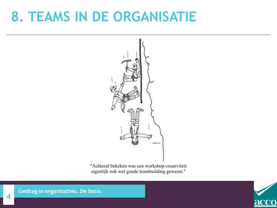 8. Teams in de organisatie