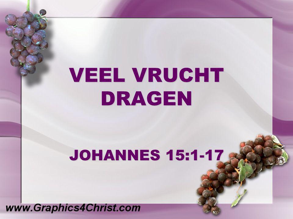 VEEL VRUCHT DRAGEN JOHANNES 15:1-17