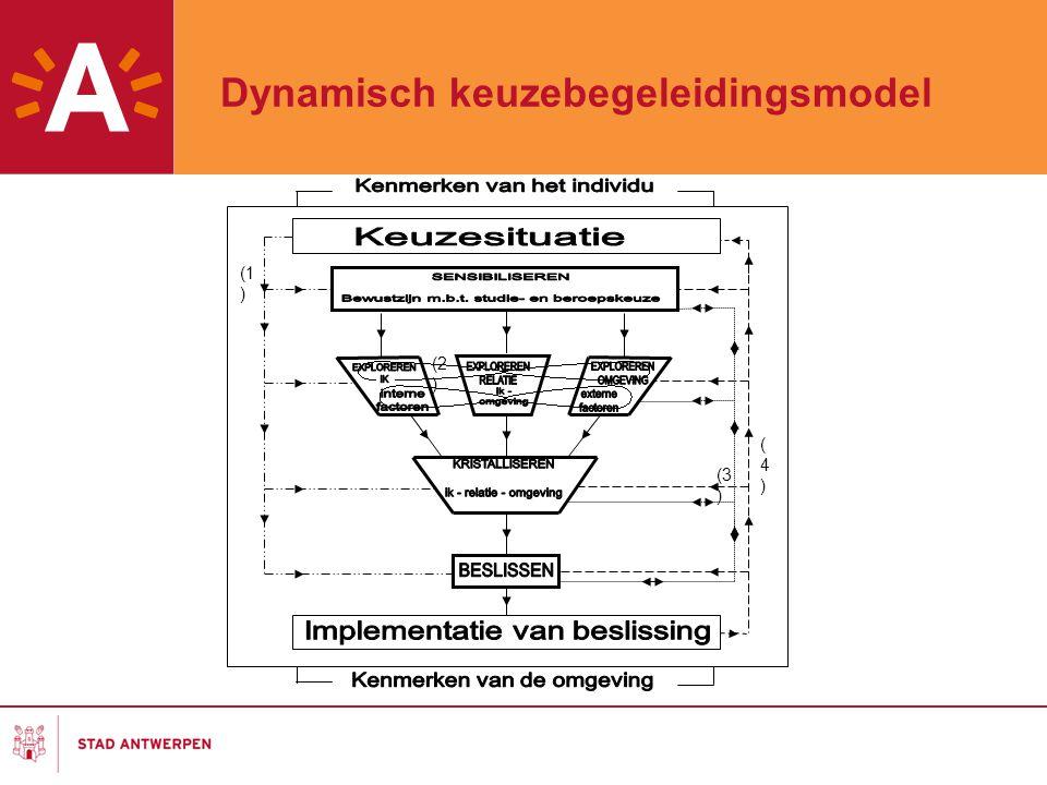 Dynamisch keuzebegeleidingsmodel