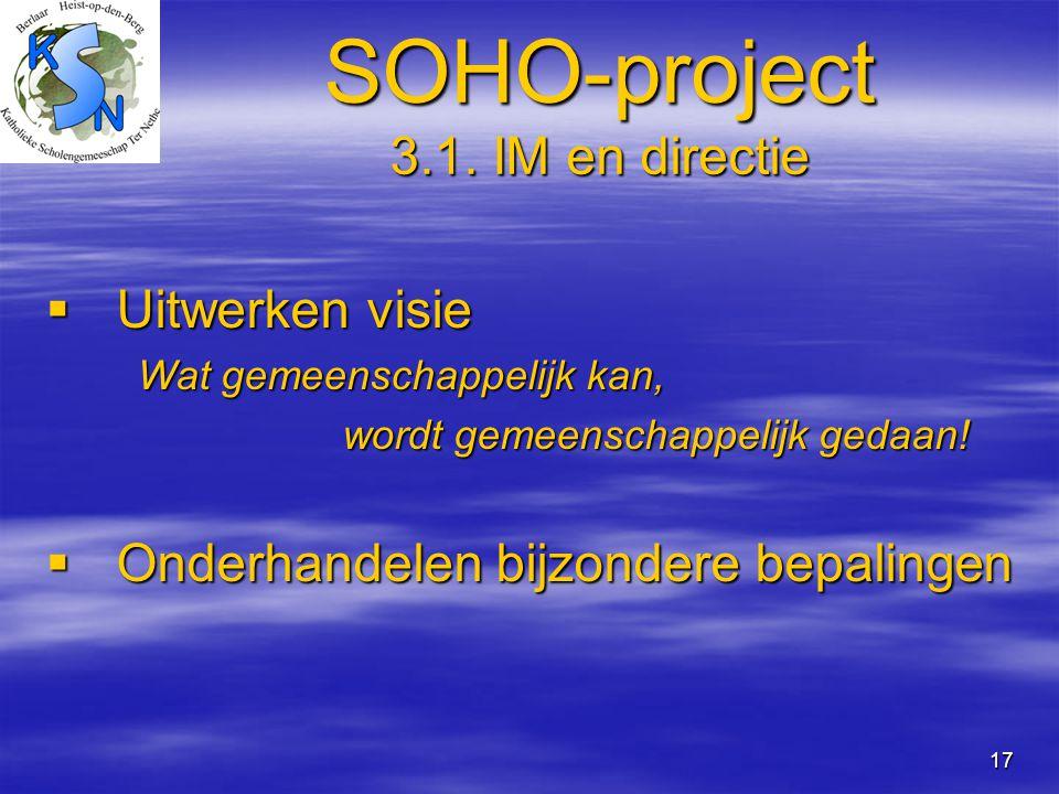 SOHO-project 3.1. IM en directie