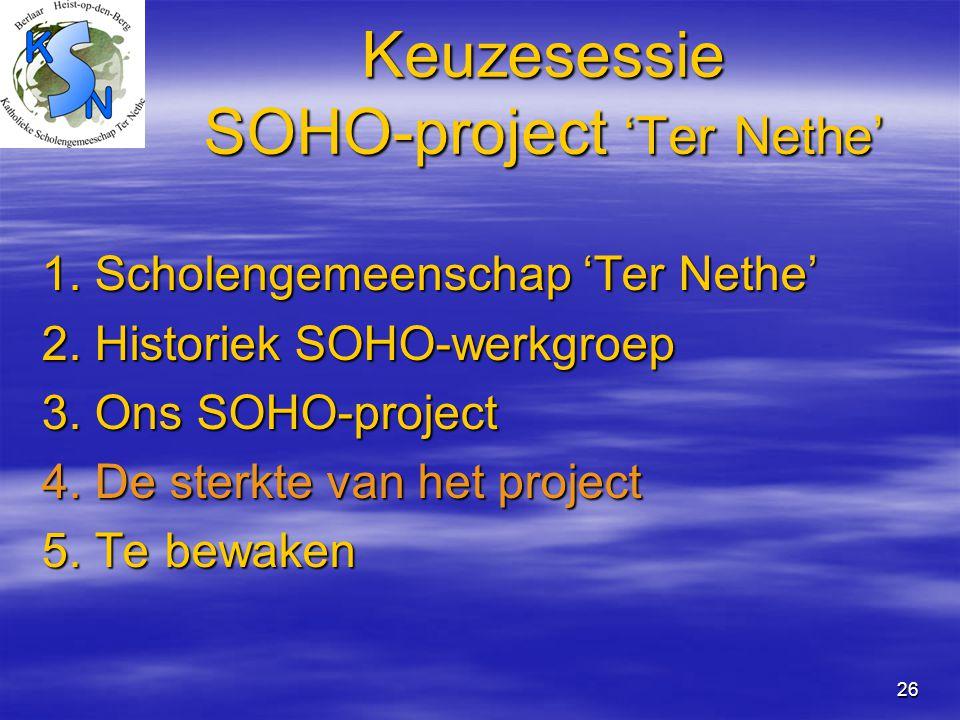 Keuzesessie SOHO-project 'Ter Nethe'