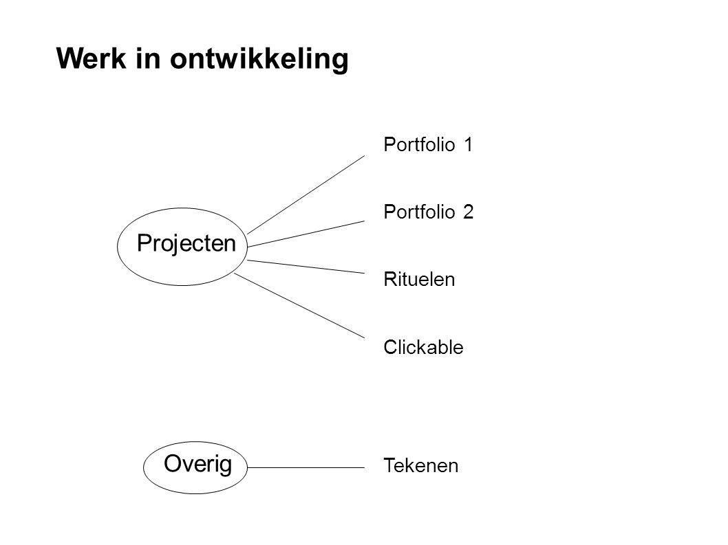 Werk in ontwikkeling Projecten Overig Portfolio 1 Portfolio 2 Rituelen