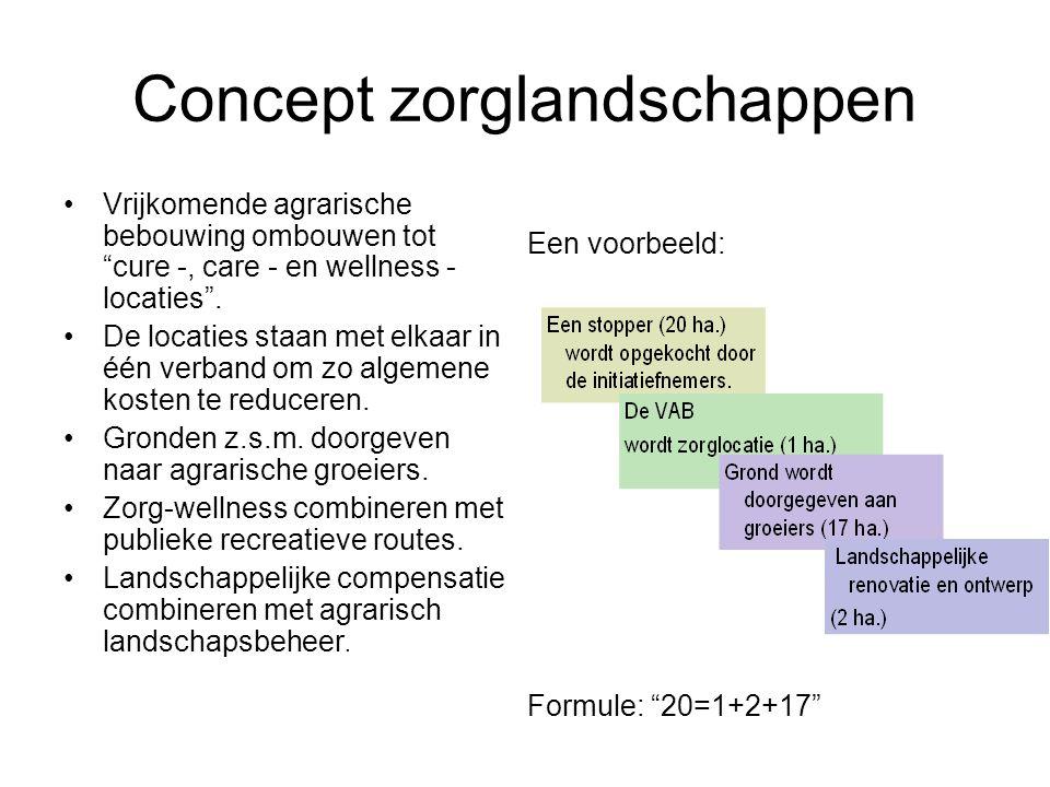 Concept zorglandschappen