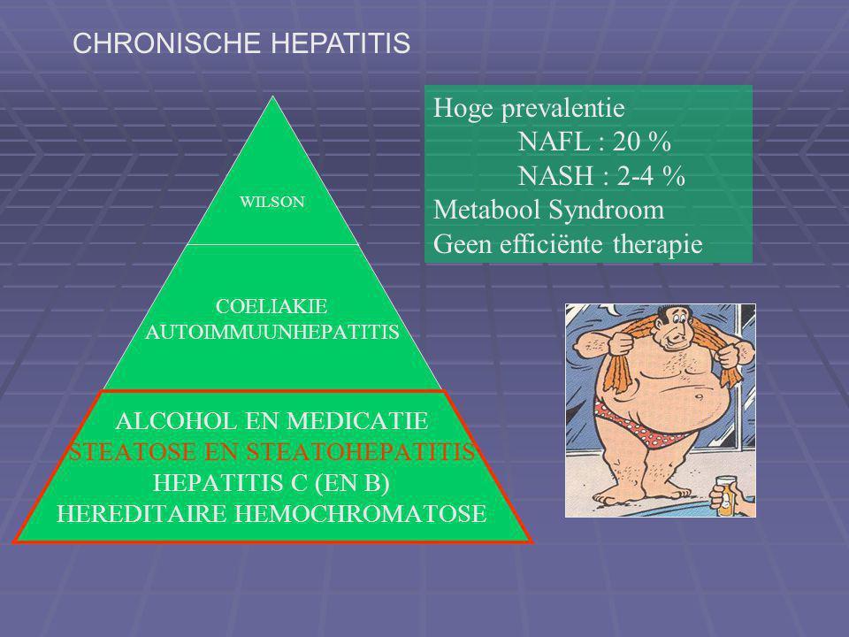 CHRONISCHE HEPATITIS Hoge prevalentie. NAFL : 20 % NASH : 2-4 % Metabool Syndroom.