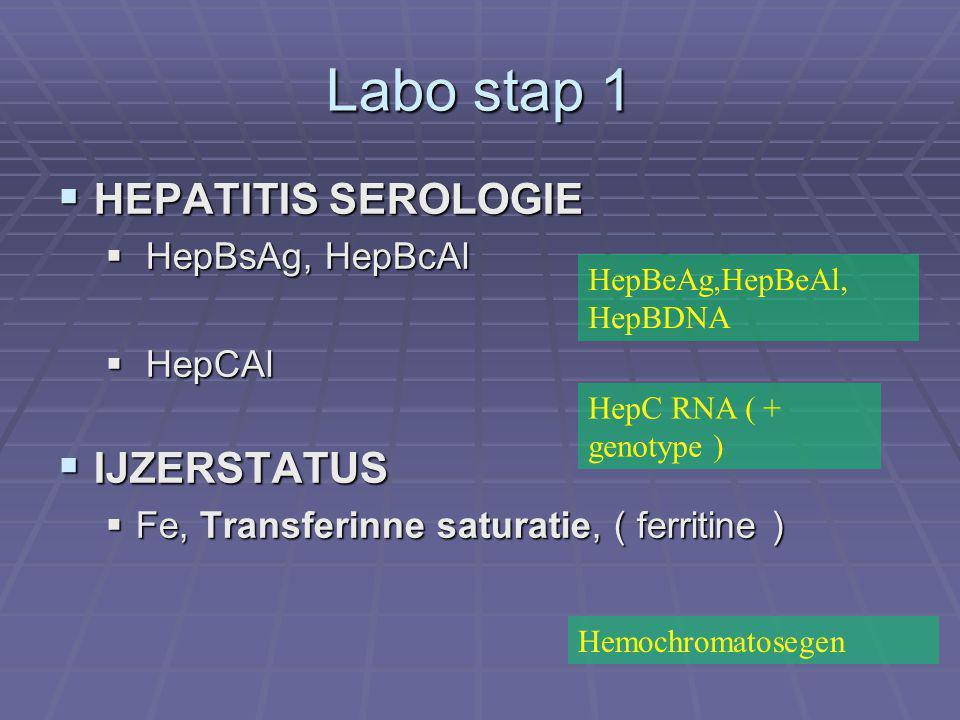 Labo stap 1 HEPATITIS SEROLOGIE IJZERSTATUS HepBsAg, HepBcAl HepCAl