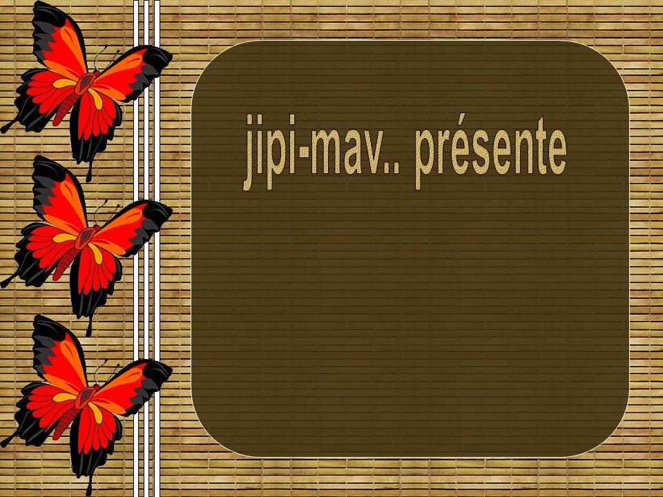 jipi-mav.. présente