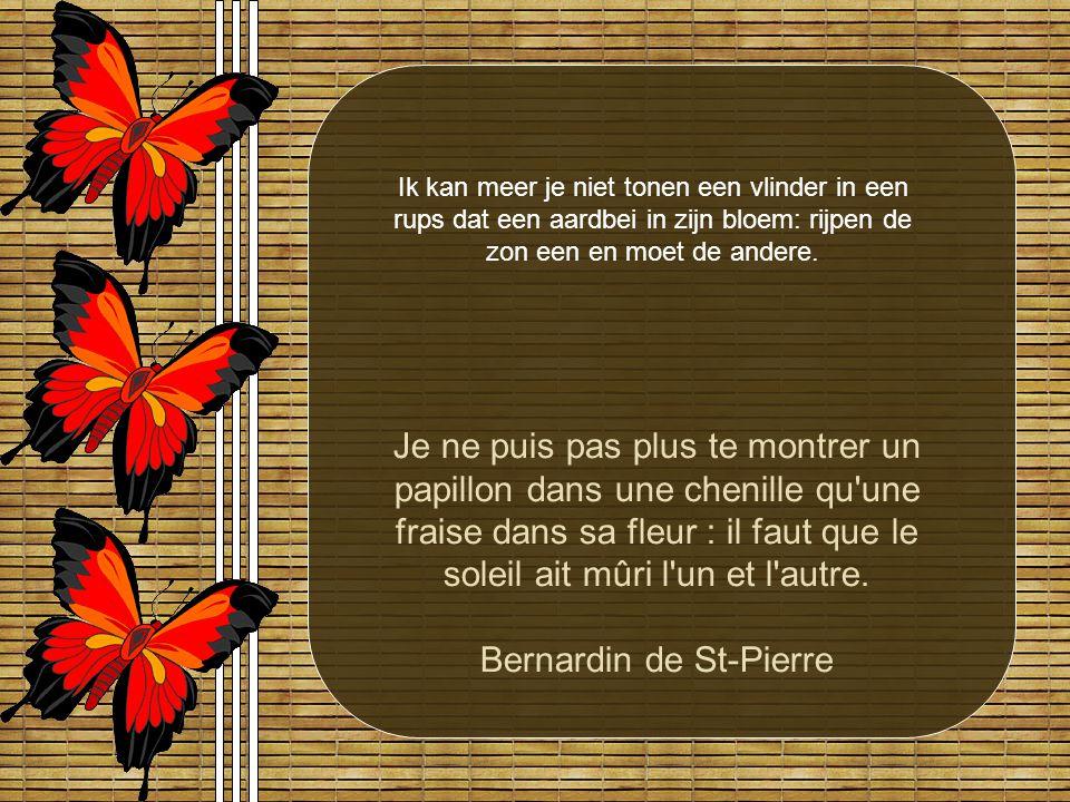 Bernardin de St-Pierre