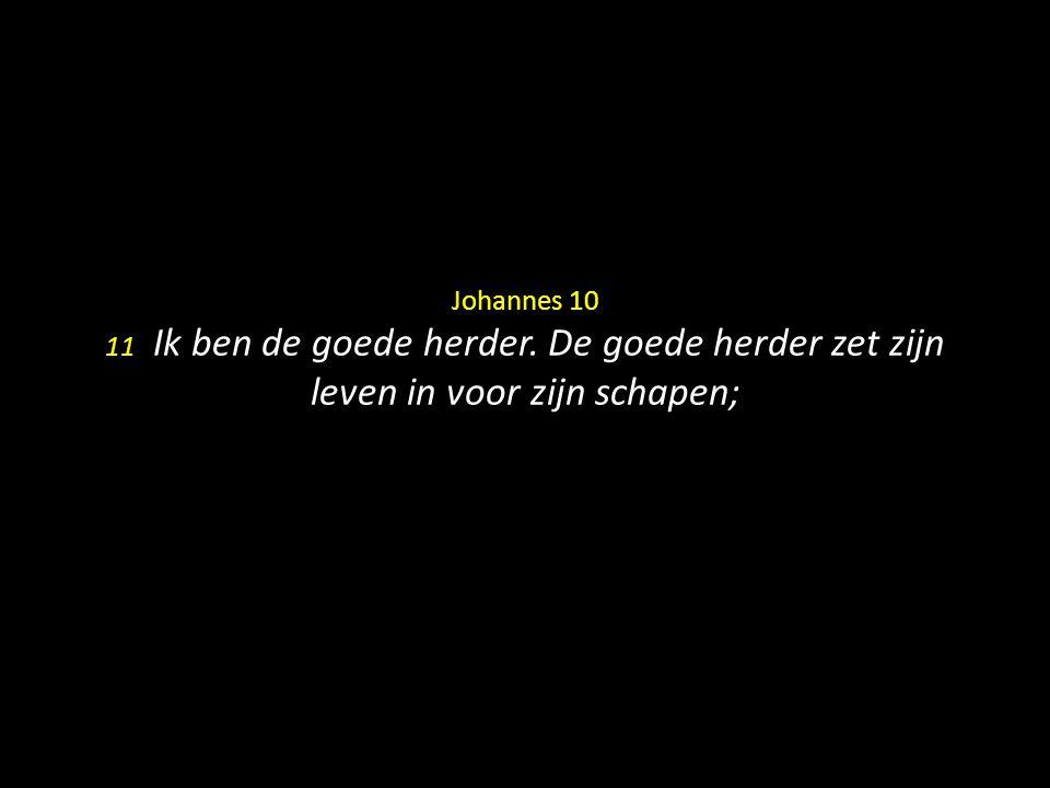 Johannes 10 11 Ik ben de goede herder