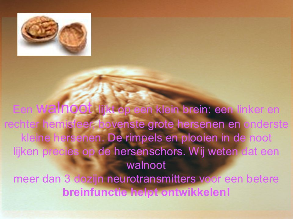 breinfunctie helpt ontwikkelen!