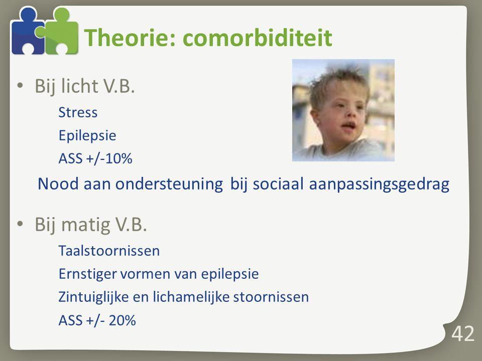 Theorie: comorbiditeit