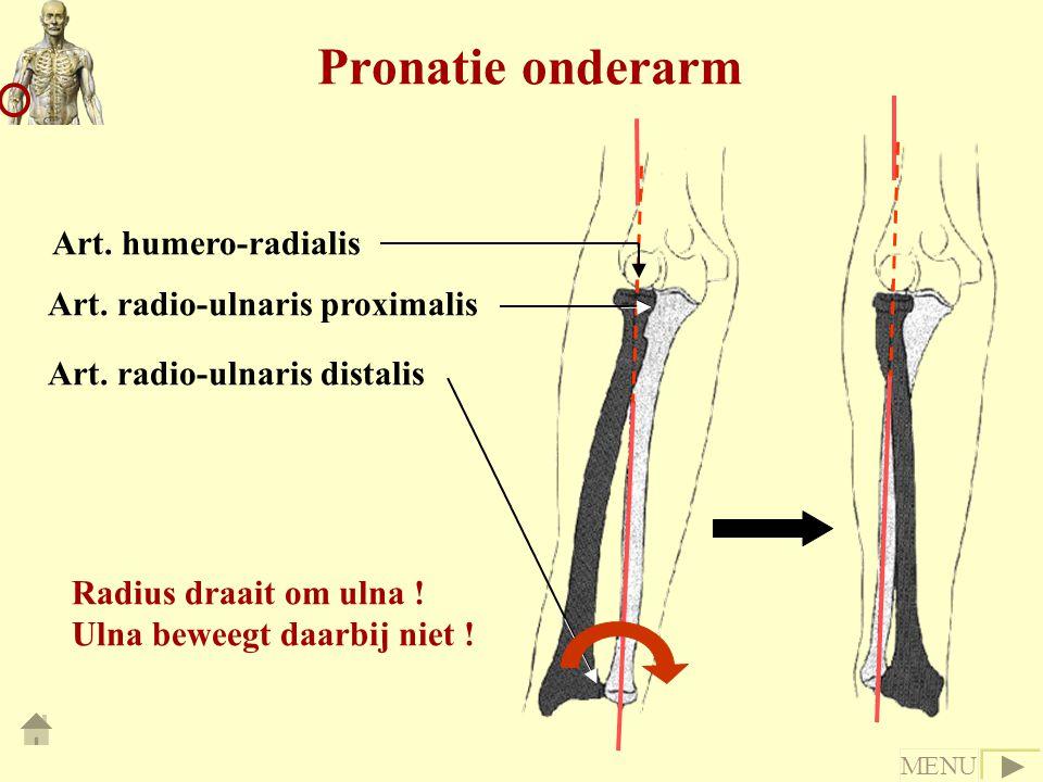 Pronatie onderarm Art. humero-radialis Art. radio-ulnaris proximalis