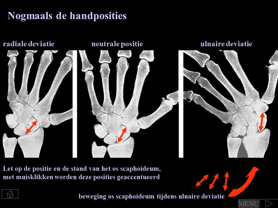 Nogmaals de handposities