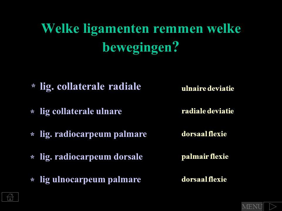 Welke ligamenten remmen welke bewegingen