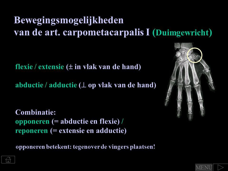 Bewegingsmogelijkheden van de art. carpometacarpalis I (Duimgewricht)