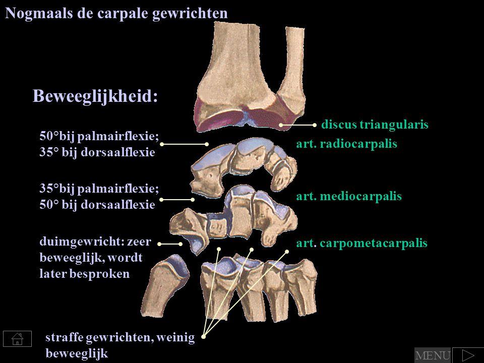 Beweeglijkheid: Nogmaals de carpale gewrichten discus triangularis