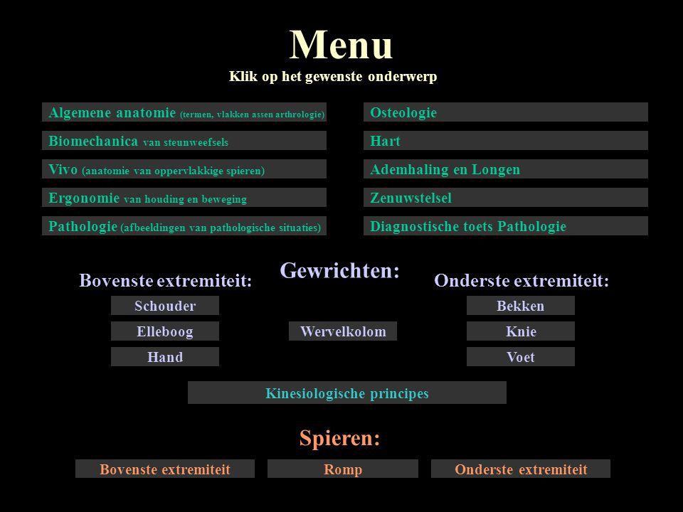 Kinesiologische principes
