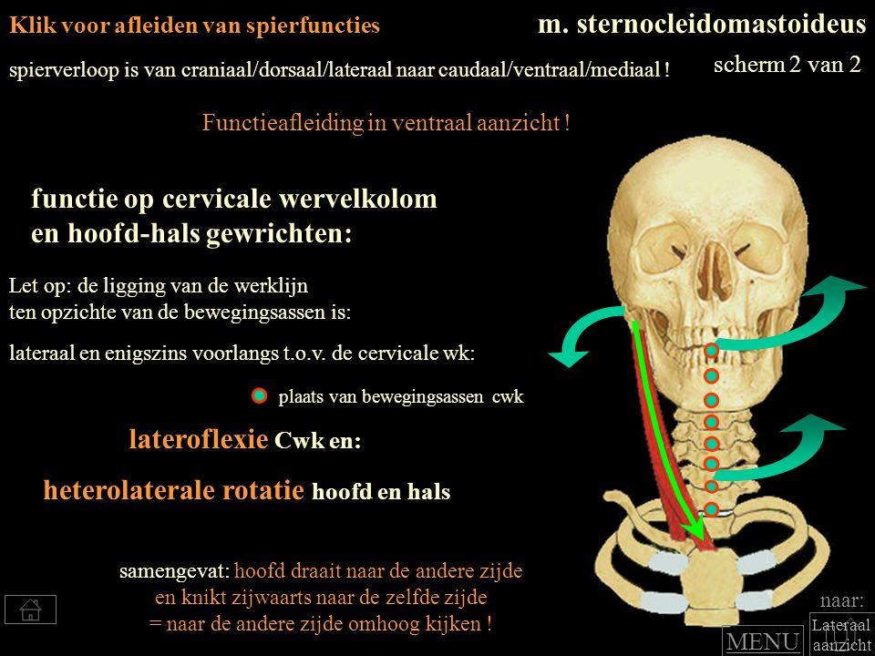 heterolaterale rotatie hoofd en hals