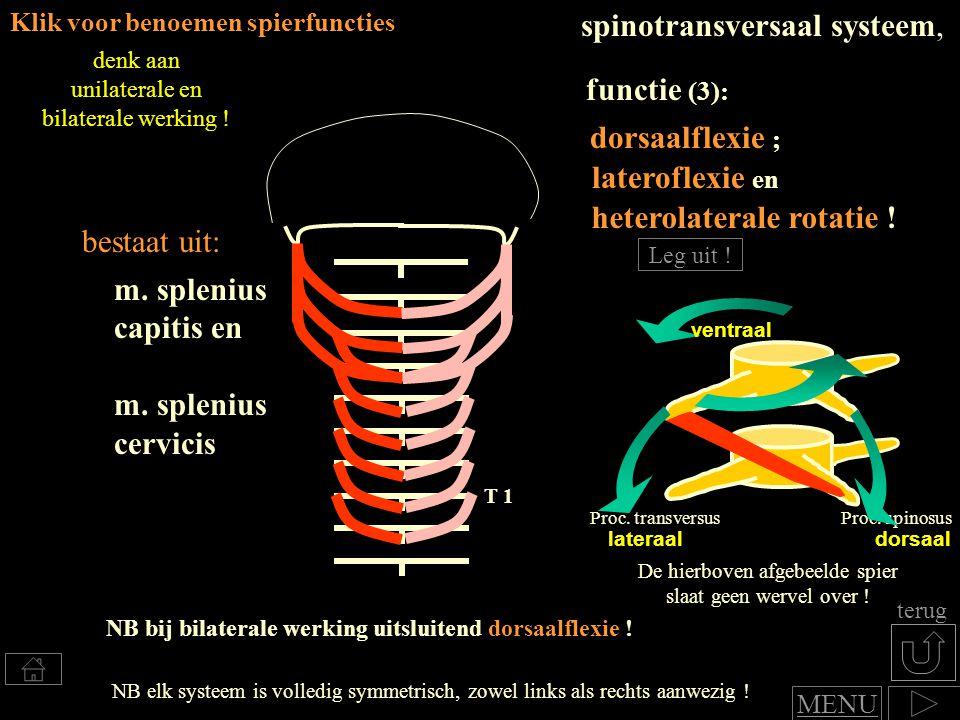 heterolaterale rotatie !