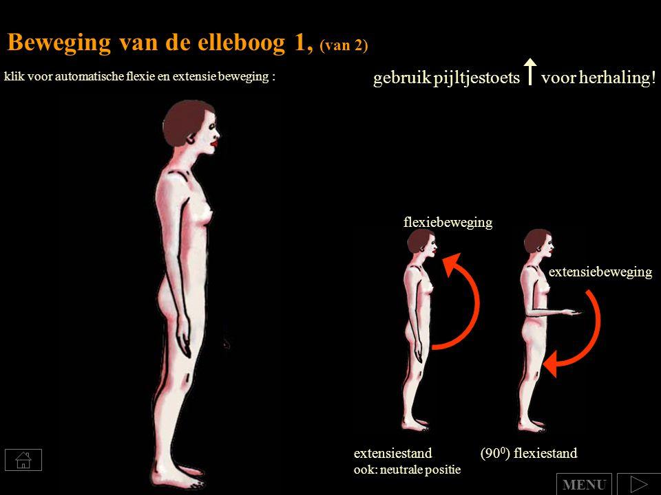 Beweging van de elleboog 1, (van 2)