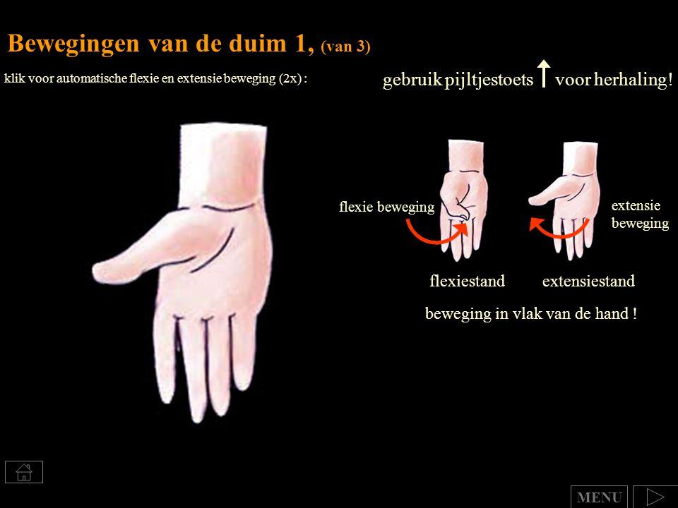 Bewegingen van de duim 1, (van 3)