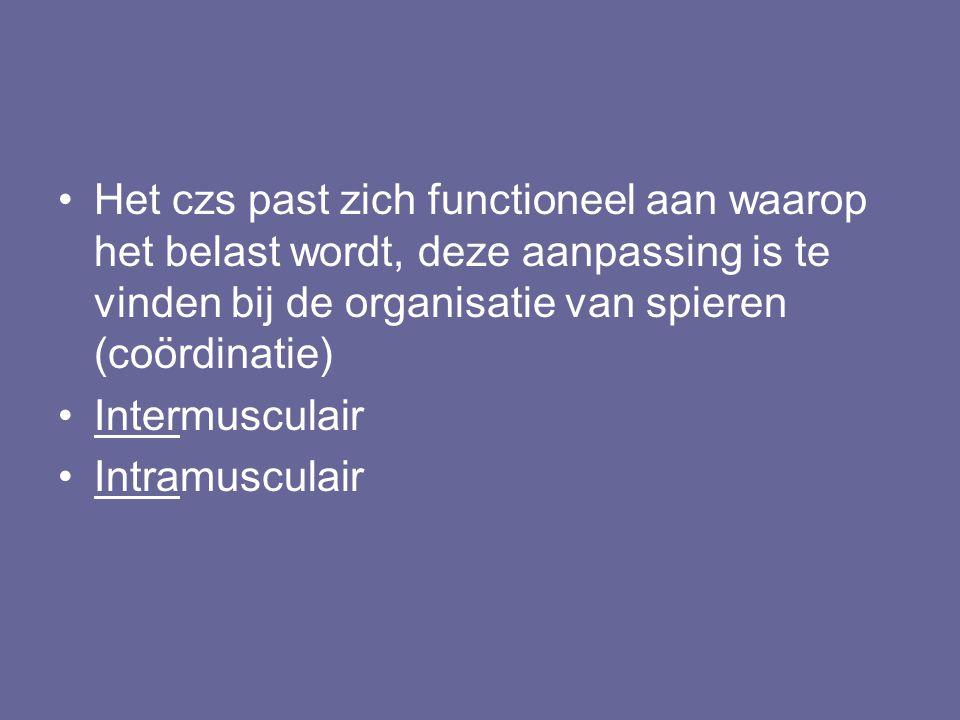 Het czs past zich functioneel aan waarop het belast wordt, deze aanpassing is te vinden bij de organisatie van spieren (coördinatie)