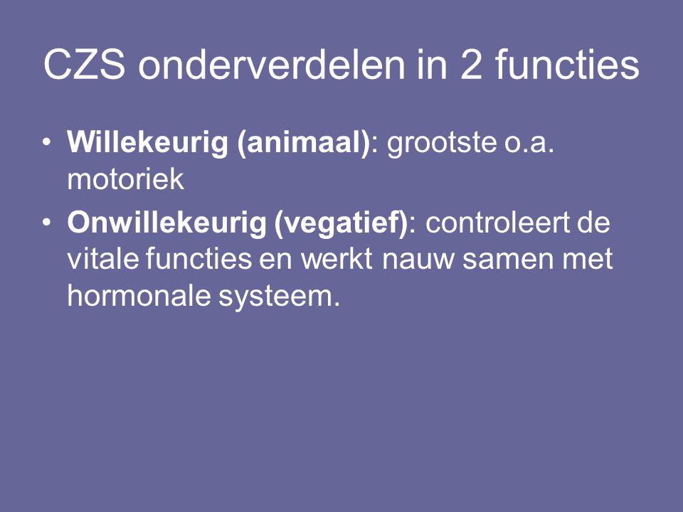 CZS onderverdelen in 2 functies