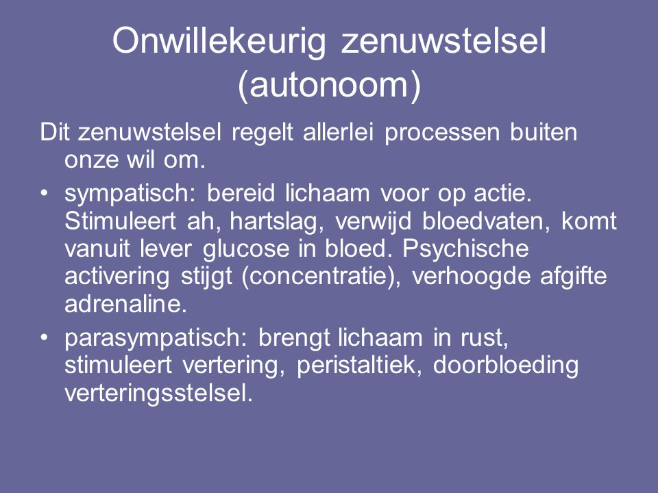 Onwillekeurig zenuwstelsel (autonoom)