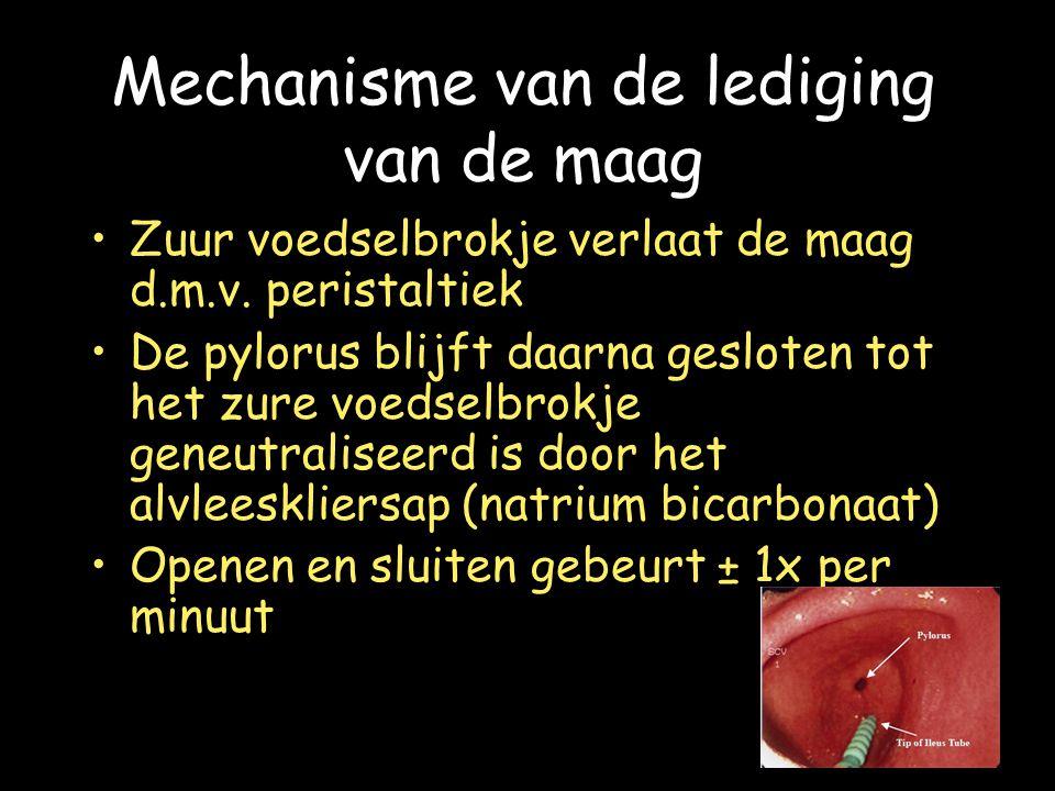 Mechanisme van de lediging van de maag