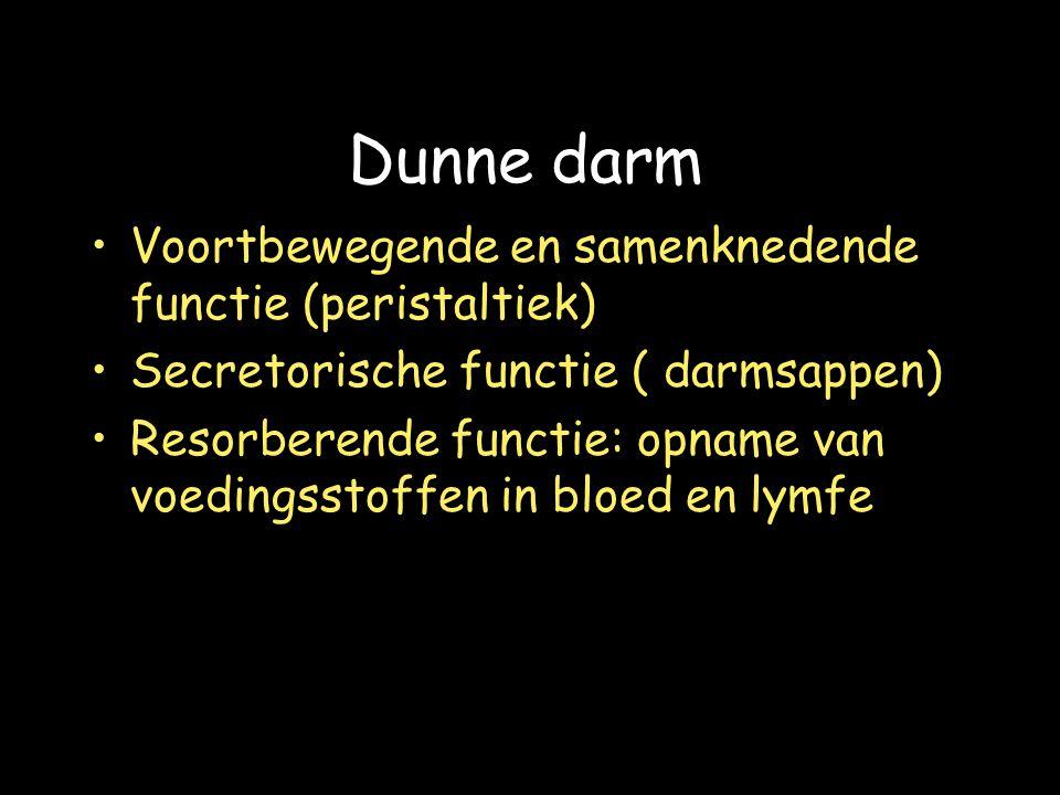 Dunne darm Voortbewegende en samenknedende functie (peristaltiek)