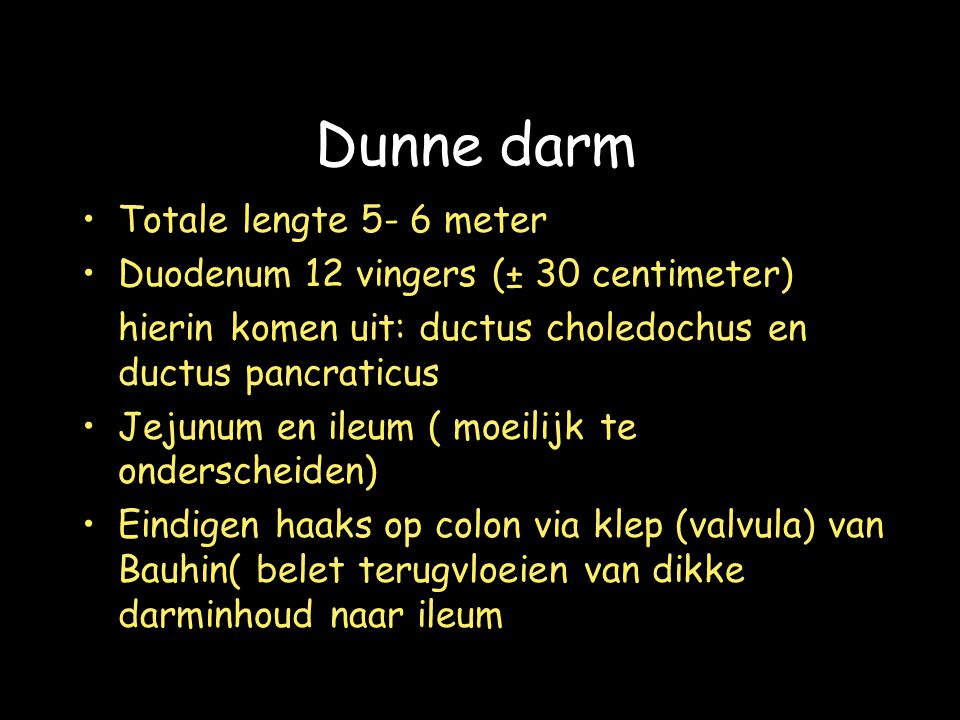 Dunne darm Totale lengte 5- 6 meter