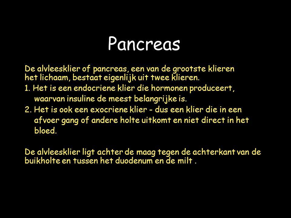Pancreas De alvleesklier of pancreas, een van de grootste klieren van het lichaam, bestaat eigenlijk uit twee klieren.