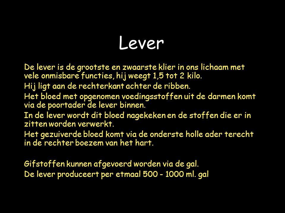 Lever De lever is de grootste en zwaarste klier in ons lichaam met vele onmisbare functies, hij weegt 1,5 tot 2 kilo.